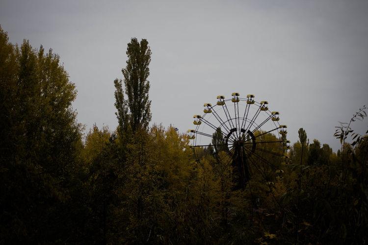 Ferris Wheel Amidst Trees Against Clear Sky