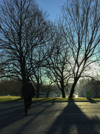 Bare Tree Beauty In Nature Branch Day Full Length Men Nature One Person Outdoors People Real People Rear View Road Shadow Sky Sunlight The Way Forward Tree Walking