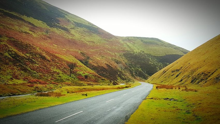 Taking Photos Relaxing Enjoying The View Eye Em Scotland Scenery Shots Amazing View On The Road Home Road Trip Roads Roadscenes Roadside Roadtrip Scotland 💕 Relaxing Scenic View Scotland The Long Road Home Hello World Rolling Hills Hillside Hills Scenery Taking Photos Scenics Autumn Colors