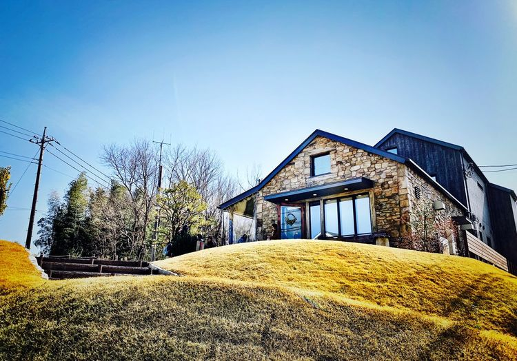 Sky Built Structure Architecture Nature Building Exterior Day No People Low Angle View Copy Space Sunny Sunlight Blue Tree House Plant Building Clear Sky Outdoors Pattern