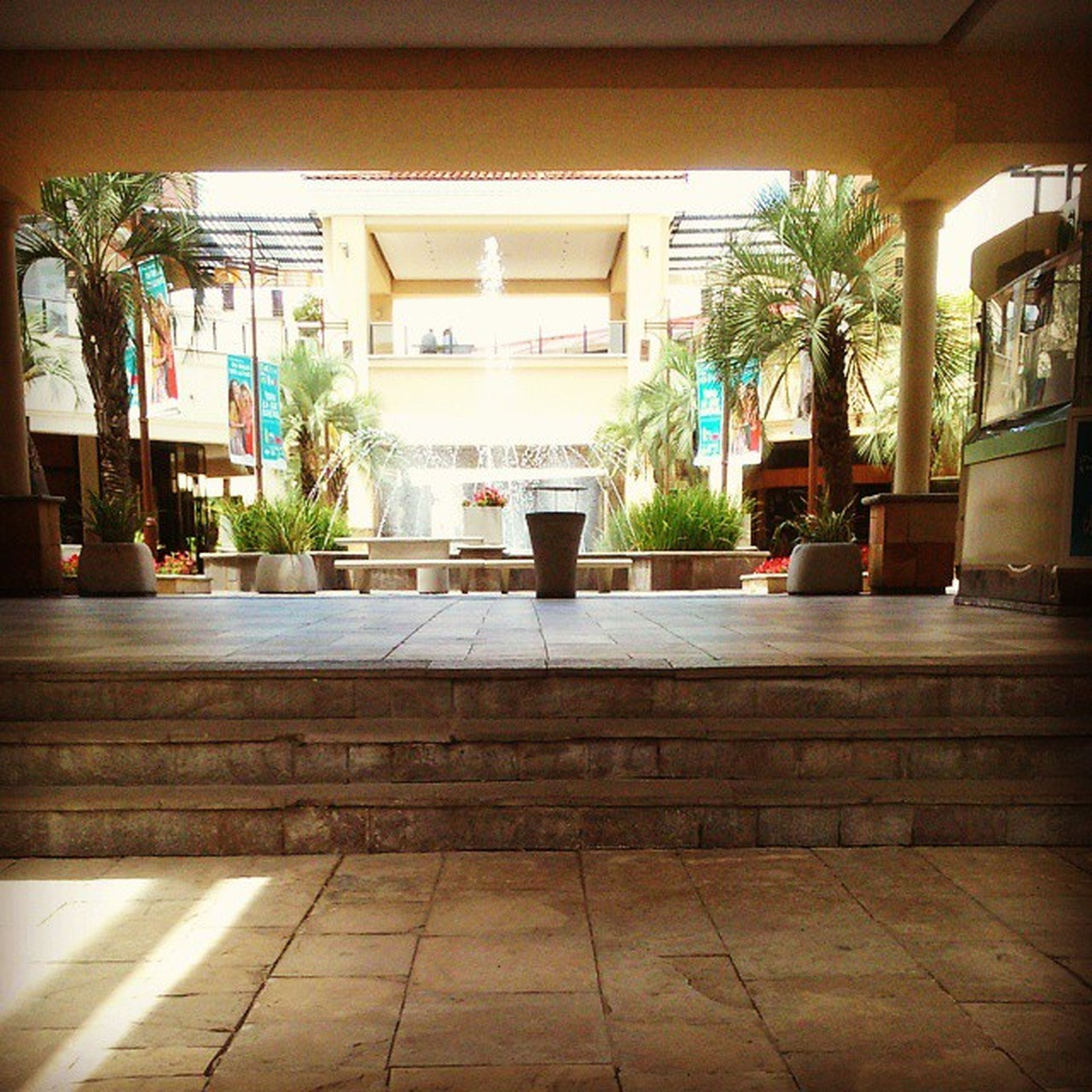 architecture, built structure, potted plant, building exterior, palm tree, tree, indoors, tiled floor, plant, growth, flooring, house, window, sunlight, building, no people, day, empty, residential structure, residential building