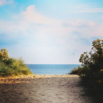 Sea Sky Beach Nature Water Tranquility Scenics Horizon Over Water Cloud - Sky Beauty In Nature Tranquil Scene No People Sand Outdoors Day Tree Scenery Path In Nature Pathway Kernow Beach Photography