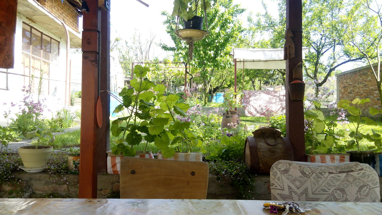 Chillin' Village Village Green Garden Nikolovo