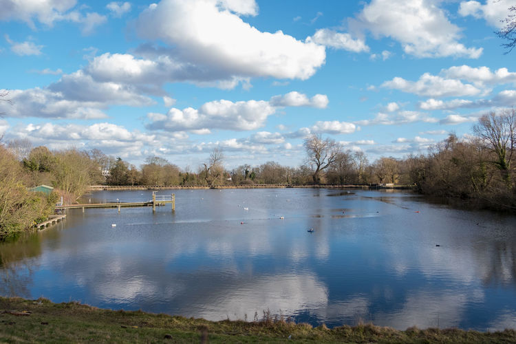 Hampstead Heath Beauty In Nature Cloud - Sky Day Hampstead Heath Ponds Lake Nature No People Outdoors Scenics Sky Tranquil Scene Tranquility Tree Water