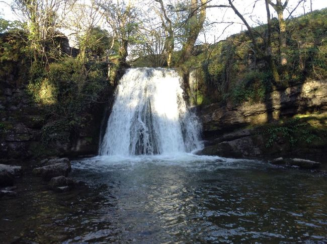 Janet's Foss in Malham Waterfall Beauty In Nature Tranquility Yorkshire Malham Janet's Foss