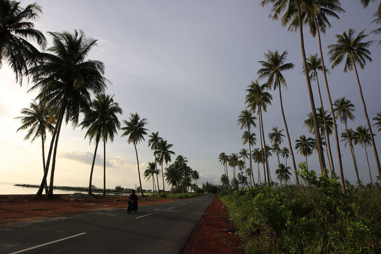 View Of Road Against Clear Sky