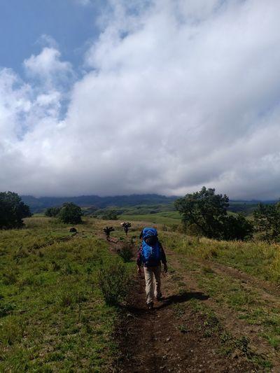 Rear view of men walking on landscape against sky