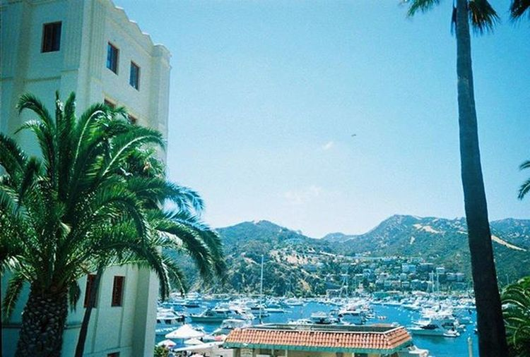 Just get out, go somewhere and do something! Woo! I loved CatalinaIsland Travel Travels Traveler Paradisev Mountains Boat Boats Palmtree Palmtrees Ocean Scenery Vacation Vacations Bestvacations Adventure New Place Places Fun Outside