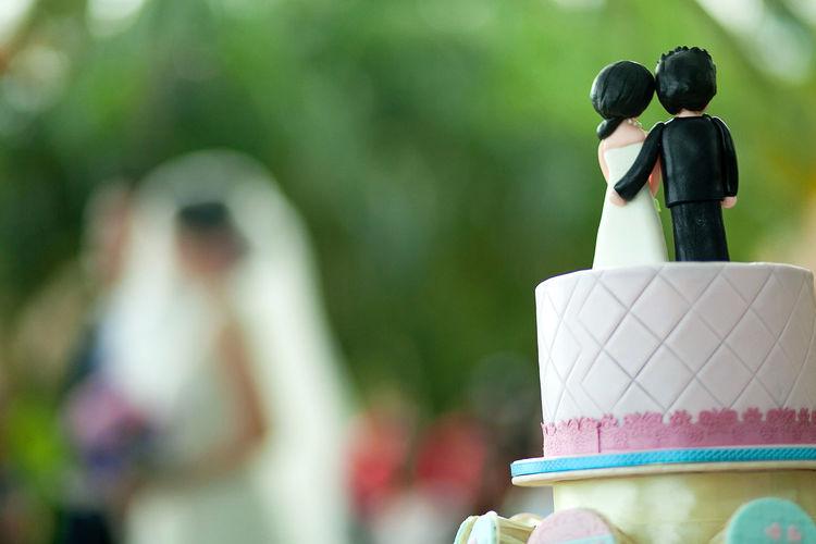 Close-up of wedding cake figurine