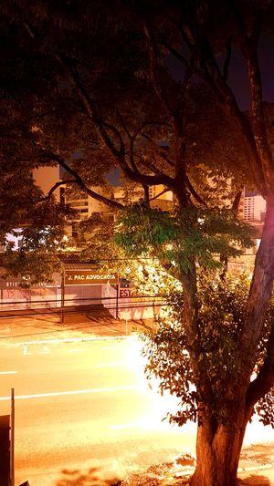 Ahhh esse S7... S7edgephotography Nightshot🌙 Tree Nature Exposure Photohobby Light And Shadow Street