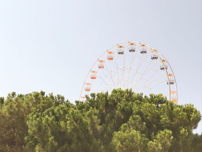 Plant Sky Tree Amusement Park Ride Ferris Wheel Amusement Park Nature Clear Sky Copy Space Arts Culture And Entertainment Day No People Growth Low Angle View Outdoors Architecture Positive Emotion Green Color Large Built Structure