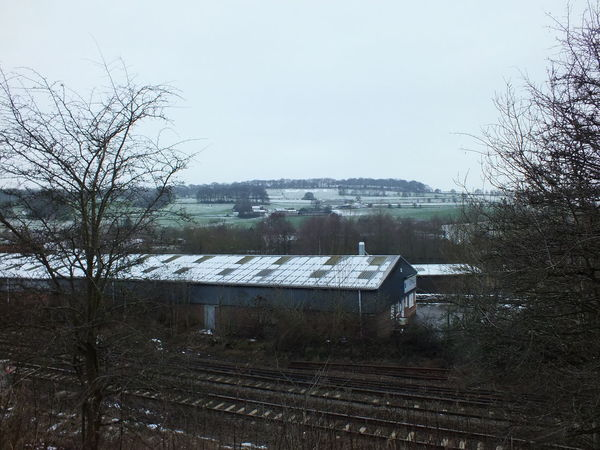 Photographic Memory Child Hood Memories Taking Train To Belper Great Day Out Derbyshire Uk Dog Walking Taking Photos Share Your Adventure Wintertime
