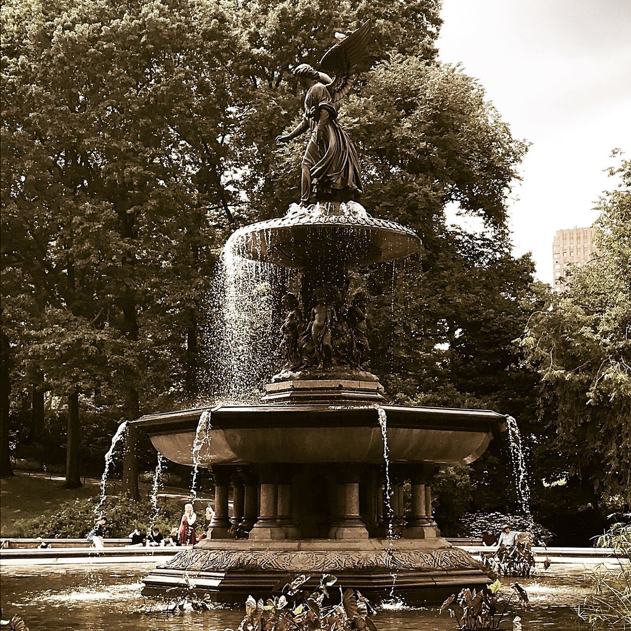 FOUNTAIN IN PARK AGAINST TREES AND PLANTS