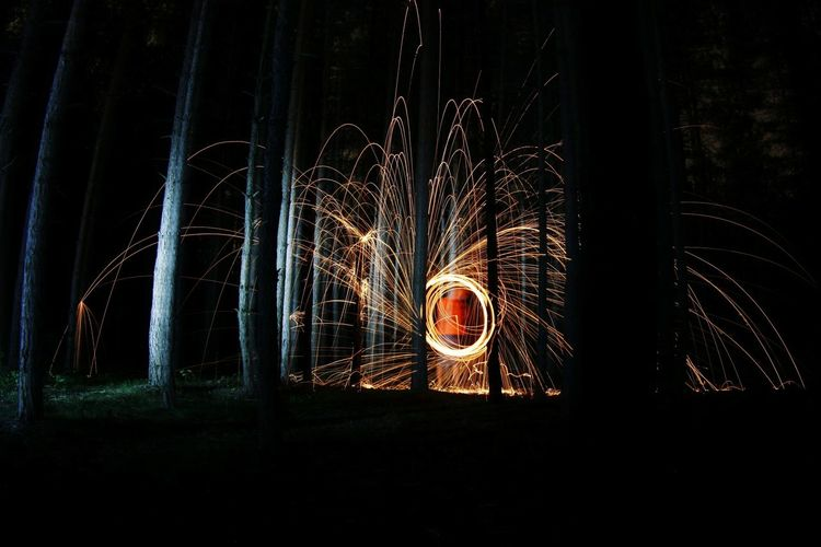 View Of Fireworks In The Forest At Night