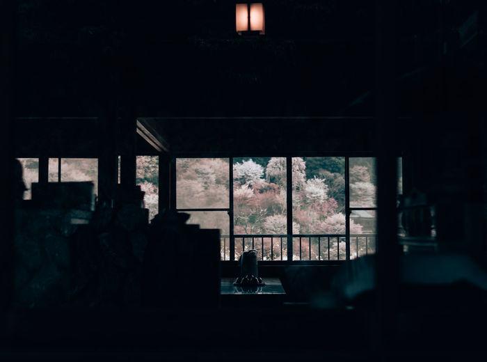 Yoshino Mountain, Nara, Japan Cherry Blossoms Nara Nara,Japan Sakura Yoshino Cherry Yoshinoyama Glass - Material House Nature Old Plant Silhouette Tea House Window Yoshino Mountain 櫻花 EyeEmNewHere