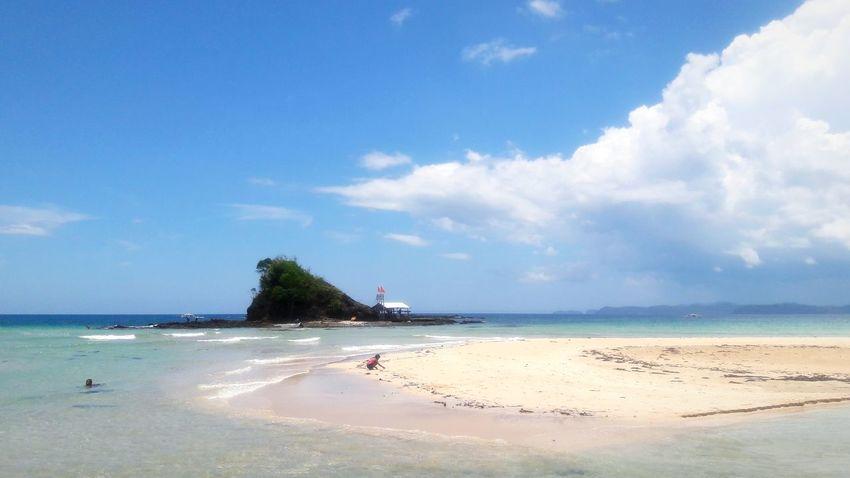 Tree Water Sea Beach Blue Sand Summer Beauty Tropical Climate Sunny Seascape Coastline Coast Wave