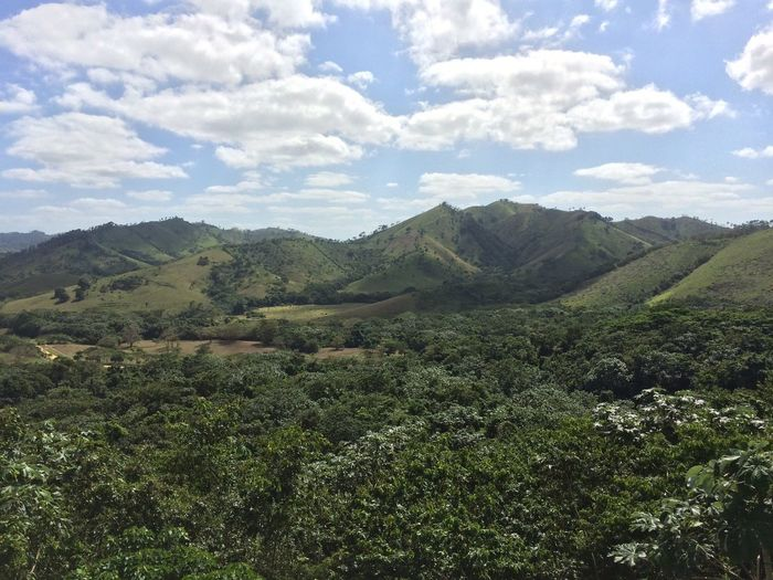 Mountains in the Dominican Republic Landscape Nature Green Mountain Sky Vegetation Beauty In Nature No People Day Outdoors Tree Mountain Range