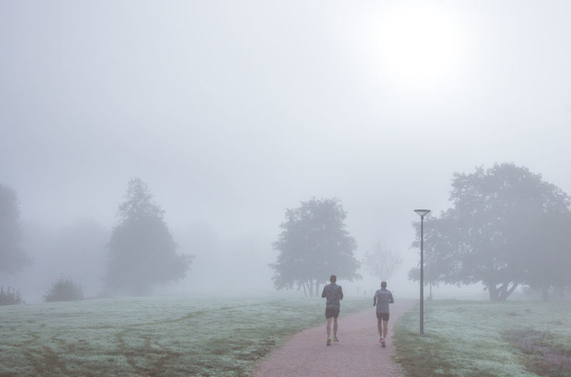 Rear view of friends jogging in park during foggy weather