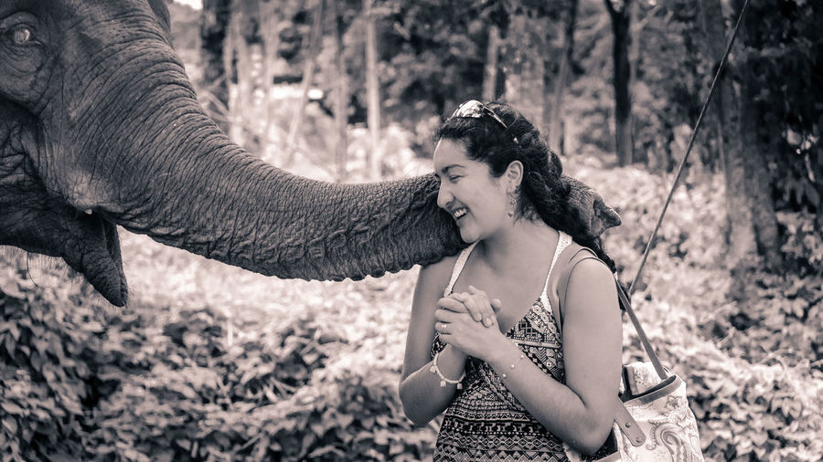 Young woman playing elephant at forest
