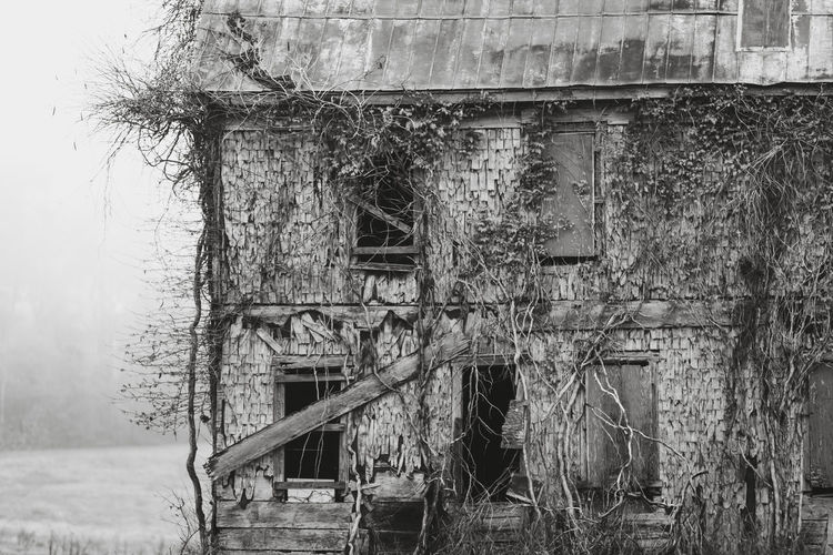 old farmhouse Abandoned Architecture Bad Condition Black And White Building Exterior Built Structure Damaged Day Destruction Deterioration Farmhouse House Monochrome No People Old Old Buildings Outdoors Ruined Tree Tree Trunk Urbex Wood Wood - Material Wooden