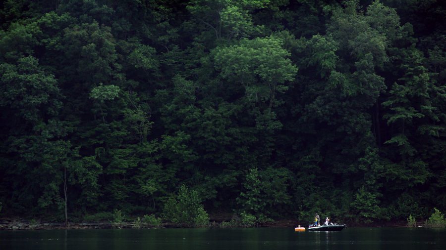 Family lounging and fishing in a small lake in Kentucky Beauty In Nature Fishing Forest Green Greenery Innertube Kentucky  Leaves Nature Outdoors Overgrown Real People River Scenics Summer Tranquility Tree Vacation Water Waterfront First Eyeem Photo