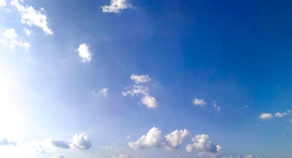 panorama white