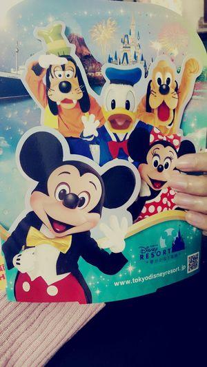 Disney lovers ??Disneyland Japan Tokyo Disney Land? Disneylover ?