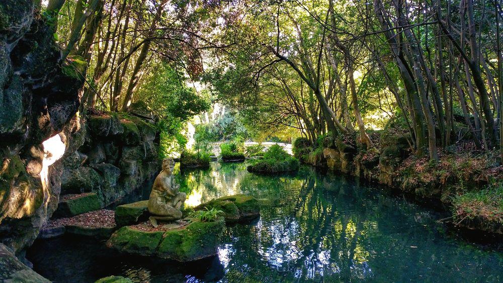 Italy🇮🇹 Italia Caserta Reggia Di Caserta Tree Reflection Nature Water Outdoors Tranquility Beauty In Nature Nature Beauty In Nature Smartphone Photography Venere Statue