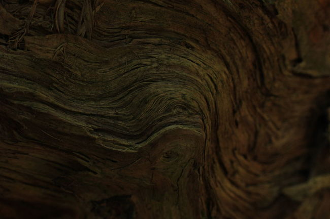 Backgrounds Close-up Day Fabric Fabric Detail Leather No People Paper Structure Structures Structures & Lines Text Textile Textiles Textured  Textured  Textures And Surfaces Wood Wooden EyeEmNewHere