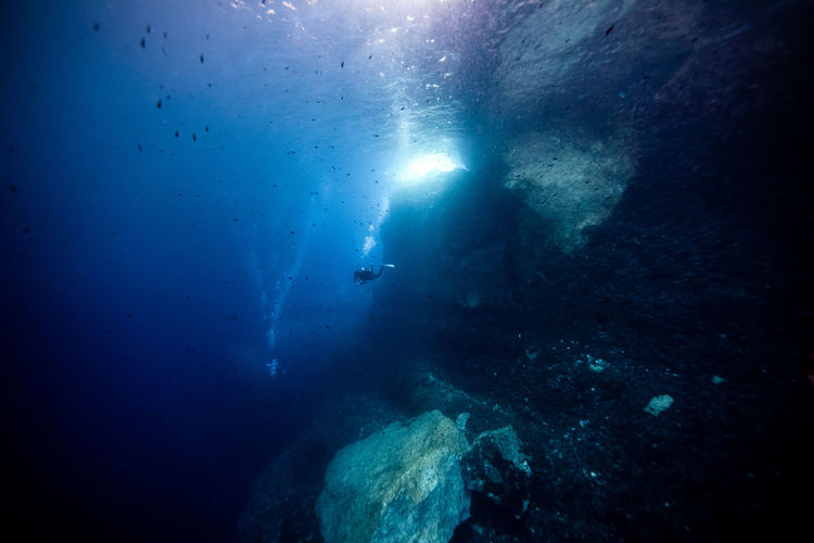 Close-up of swimming underwater