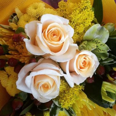 Romance Yellow Flower Beauty In Nature Bouquet Close-up Day Flower Flower Head Fragility Freshness Growth High Angle View Indoors  Nature No People Petal Plant Rose - Flower Yellow Yellow Roses Close-up