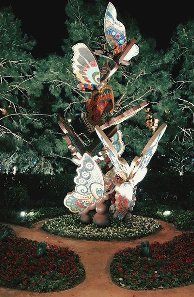 No People My Smartphone Life My IPhone 7 VegasStyle Butterflies Butterfly Garden Butterfly Art