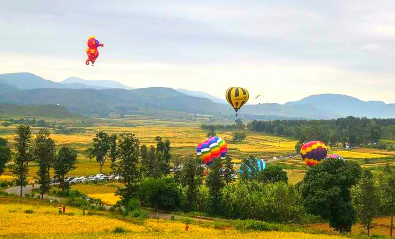 Perspectives On Nature Adventure Ballooning Festival Beauty In Nature Day Field Flying Growth Hot Air Balloon Landscape Mid-air Mountain Multi Colored Nature No People Outdoors Parachute Paragliding Scenics Sky Tree