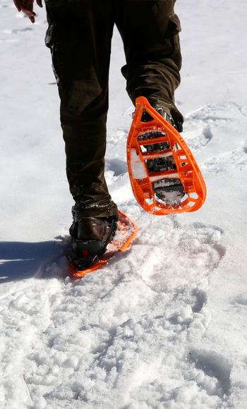 Man walks with modern orange snowshoes and corduroy pants on white fresh snow in winter Excursion Life Man Snowshoe Walking Around Winter Adventure Asiago Ciaspolata Ciaspole Close-up Enego Energy Excursions Extreme Sport Extreme Sports Guy Mountain Outdoors Real People Snow Snowshoeing Snowshoes Sportwear Walking