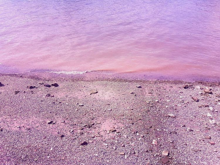 Purple Beach Textured  Riverthames Pebbles And Stones Water Tranquility Londonsouthbank