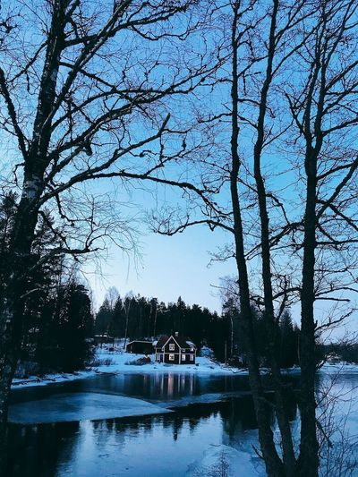 Idyllic🇸🇪 Dusk By The Lake Dusk Panorama Tree Reflection Water Nature Transportation Day Beauty In Nature Outdoors No People Branch Sky