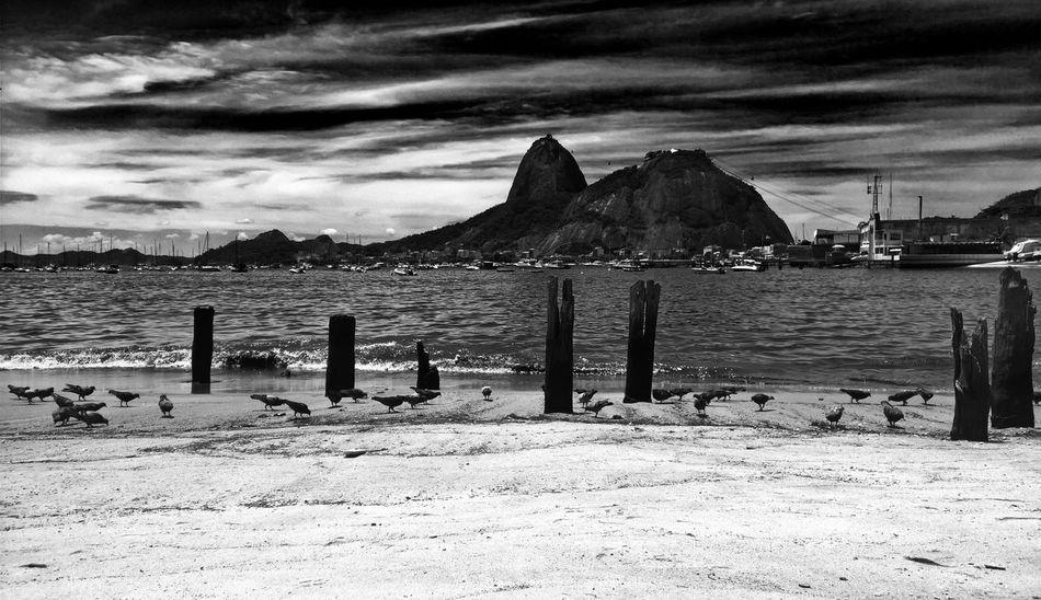 EyeEmNewHere Sky Cloud - Sky Sugarloaf Sugar Loaf Blackandwhite Black & White Black And White Poluted Earth Polution On The Beach Polution Botafogo Beach