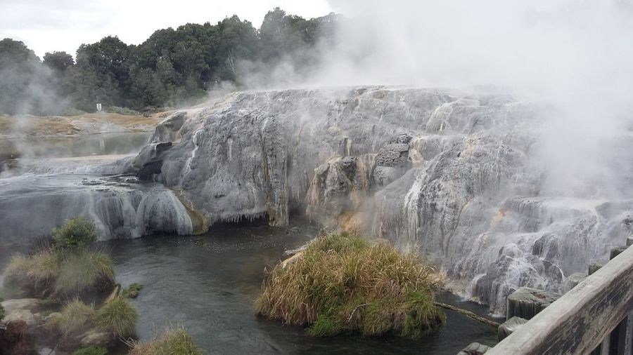 Pohutu Geyser Nofilter Nature Scenery Beautiful