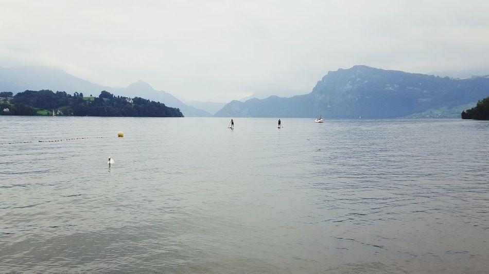 Lake Lucerne Lake Luzern Watersports Summer Summertime Taking Photos Outdoors Fun Watersports Photography Luzern Switzerland Enjoying Life