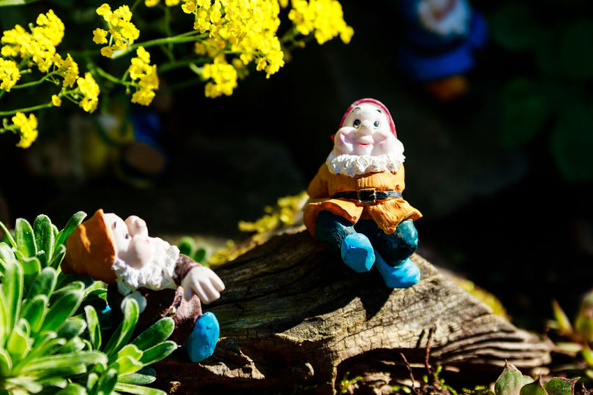 Art And Craft Close-up Creativity Day Female Likeness Figurine  Flower Flowering Plant Focus On Foreground Human Representation Male Likeness Nature No People Outdoors Plant Representation Sculpture Statue Toy Tree