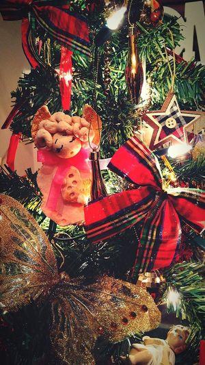 Christmas Tree Christmas Christmas Decoration Tradition Celebration Decoration Christmas Ornament Holiday - Event Christmas Lights Celebration Event Close-up