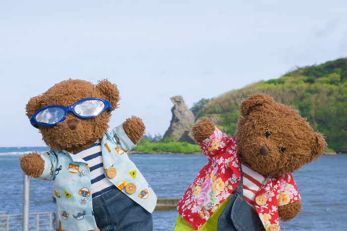 Bear Rock. Yeah! Billy And Johnny Bear Day Guam Handmade Nature Outdoors Rock Sea Teddybear