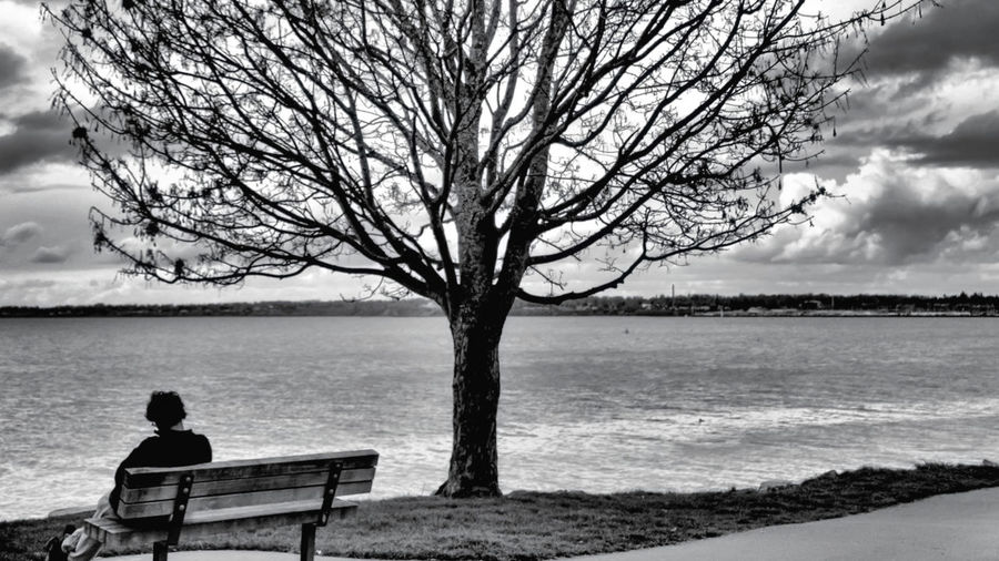 Rear view of man sitting on bench at lakeshore