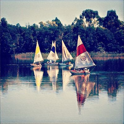 Sailing Boats Outdoors Lake View Lakes  Reflection Lake Reflection_collection Reflection In The Water Melbourne Water . Summer Fun