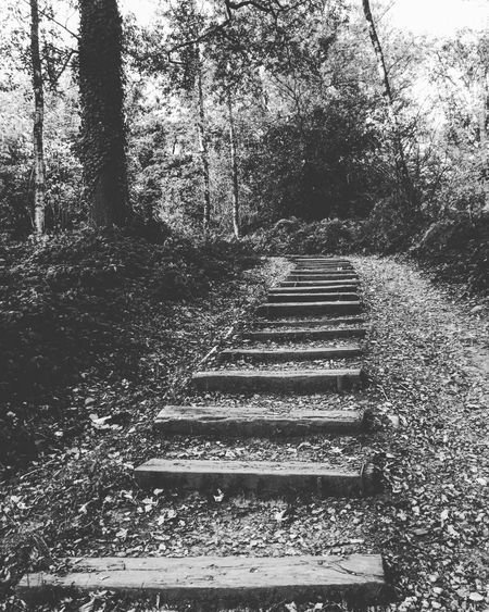 The lost stairway to......... Lovethisplace Hidden Places