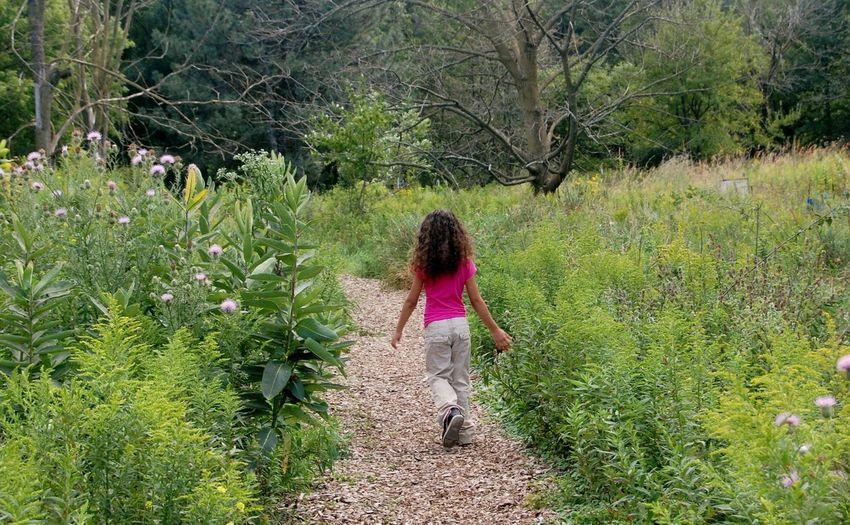 The Path that I Walk