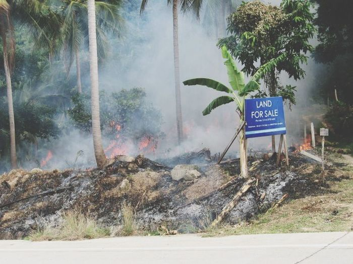 this Land is not for Sale , its on Fire RePicture Travel