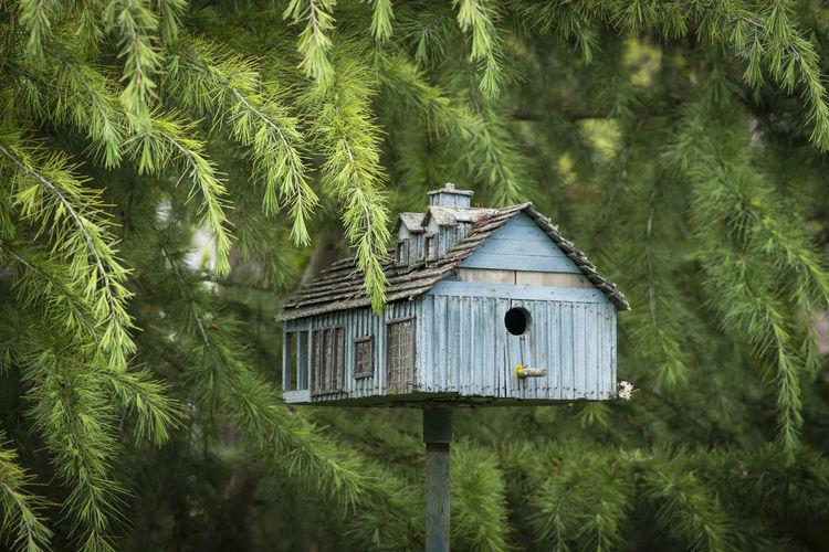 Birdhouse against trees
