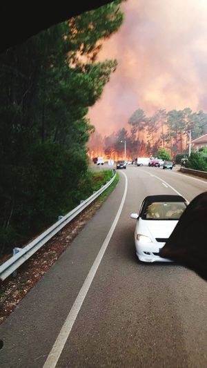 Road Car Tree Forest Mountain Outdoors Fire Burning Sad P10lite Helping People No Sky Flames