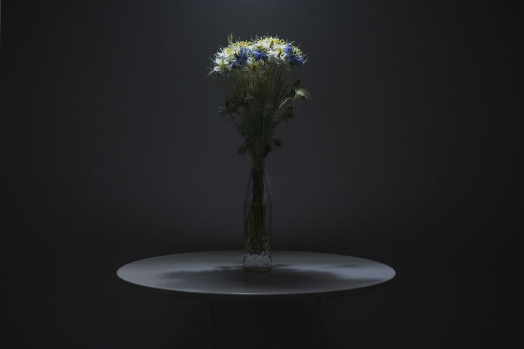 Close-up of vase on table against black background